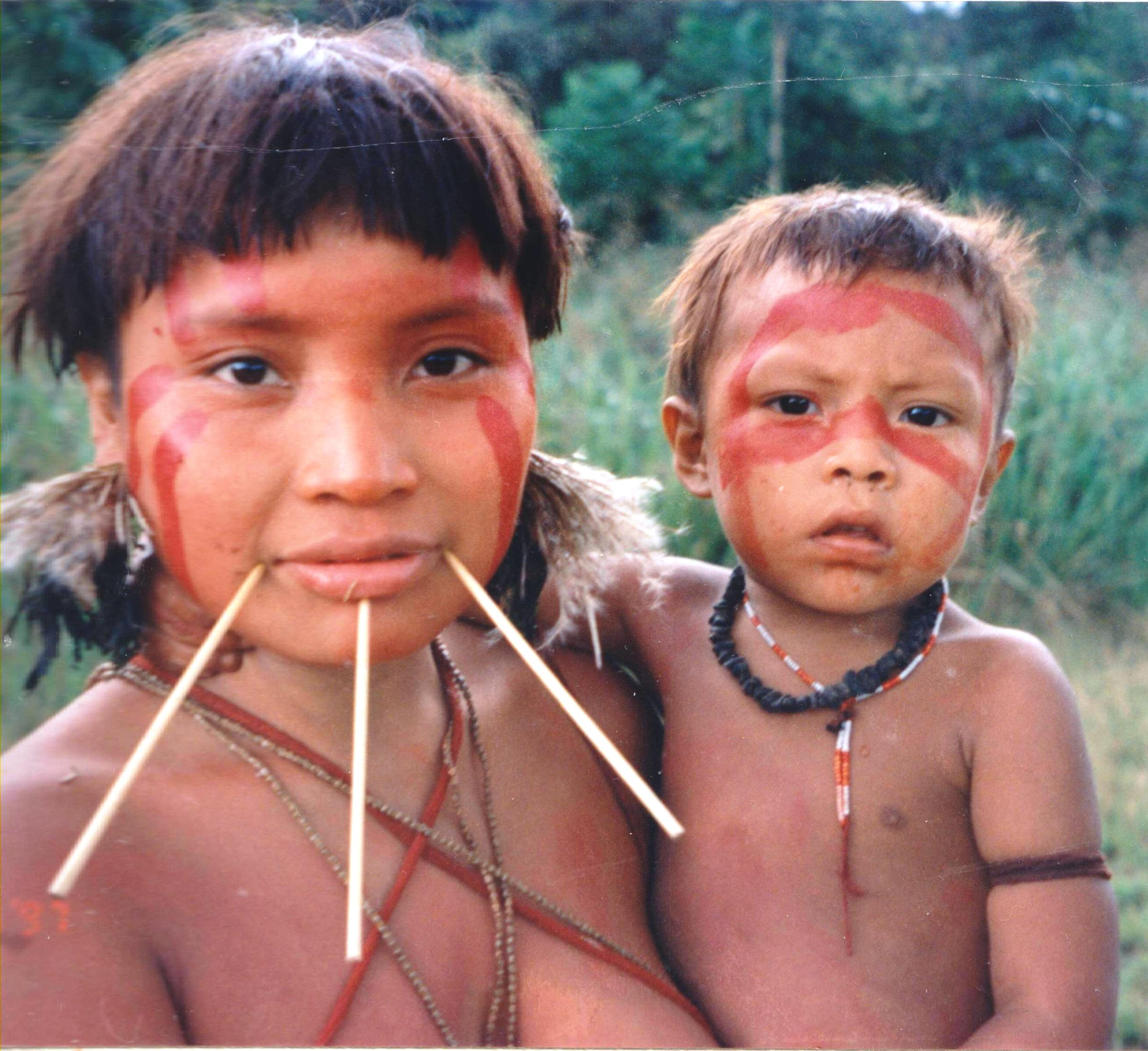 an analysis of the yanomami culture in the work of napoleon chagnon Tierney's work suggests that chagnon and his contemporaries did not act in the best interests of the yanamamo people critics of tierney, such as the response from venezuela, science 9 february 2001 accuse tierney of half truths and defend chagnon and his work.