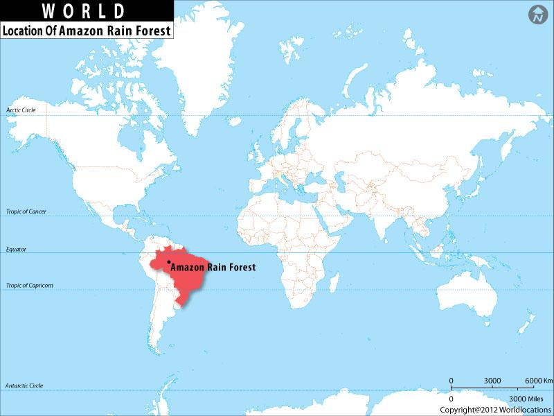 World map amazon smeka 2018 gumiabroncs Choice Image