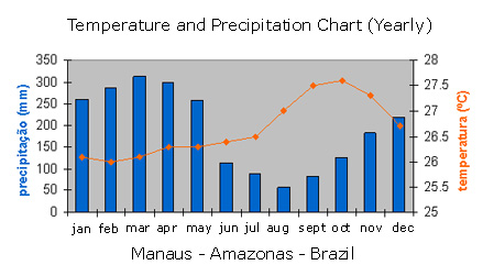 weather-manaus